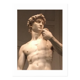 Statue of David Florence Postcard