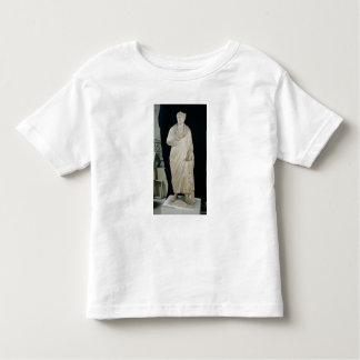 Statue of Julian the Apostate T Shirt