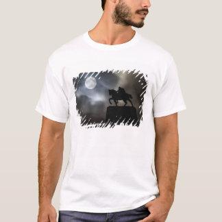Statue of King Kralja Tomislava silhouetted T-Shirt