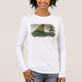 Statue of King Taharqa worshipping the falcon-god Long Sleeve T-Shirt