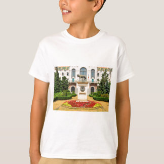 Statue of Romulus and Remus in Mures, Romania T-Shirt