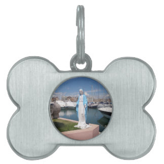 Statue Of the Virgin mary Pet Tag