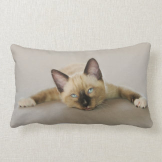 Stay cool and chill out kitten lumbar pillow