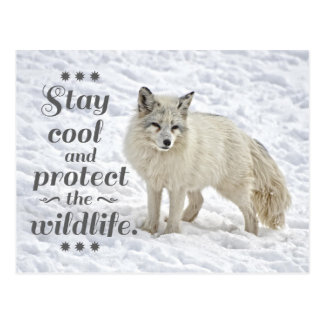 Stay cool and protect the wildlife postcard