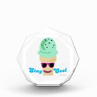 Stay Cool Ice Cream Cone Award