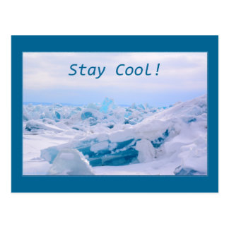 Stay Cool Post Card