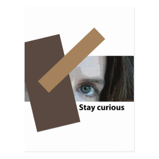 Stay Curious Postcard
