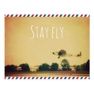 Stay Fly Postcard