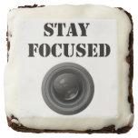 brownie, stay, focused, lens, camera, cake,