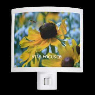 Stay Focused Daisies Custom Night Light