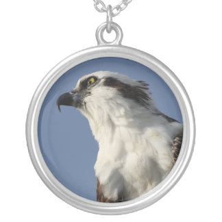 Stay Focused on Your Goals Silver Plated Necklace