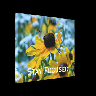 Stay Focused Quote Daisies Canvas Print