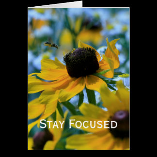 Stay Focused Quote Daisies Card