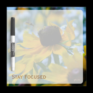 Stay Focused Quote Daisies Dry-Erase Board