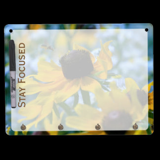 Stay Focused Quote Daisies Dry Erase Board With Keychain Holder