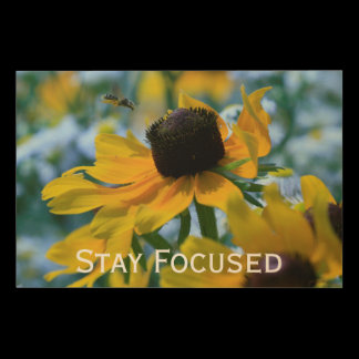 Stay Focused Quote Daisies Wood Print