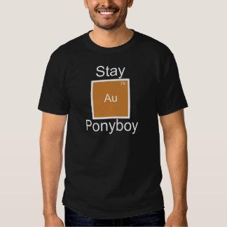 Stay Gold Ponyboy Element Pun T-Shirt
