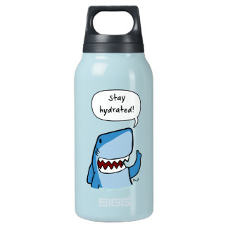 Stay hydrated insulated water bottle