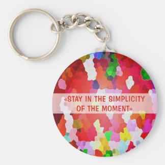 Stay-in-Keychain-carry-keys Keychain