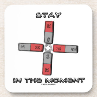 Stay In The Moment (Magnetic Quadrupole Moment) Coaster