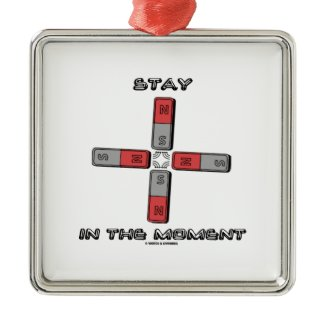 Stay In The Moment (Magnetic Quadrupole Moment) Ornaments