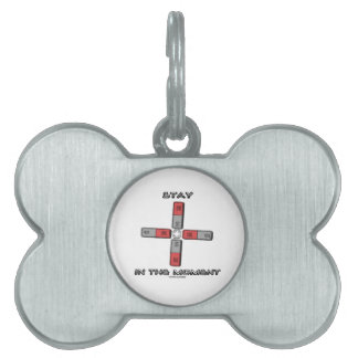 Stay In The Moment (Magnetic Quadrupole Moment) Pet Name Tag