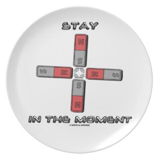Stay In The Moment (Magnetic Quadrupole Moment) Dinner Plates