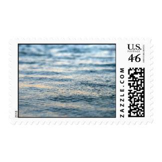 Stay Still Postage Stamp
