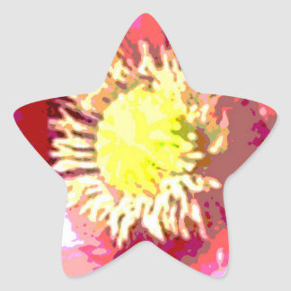 STBX Floral Decoration for Gift, Greetings, Craft Star Sticker