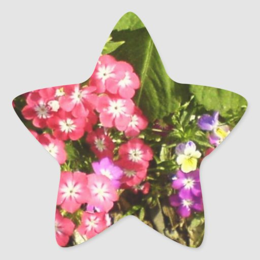 STBX Floral Decoration for Gift, Greetings, Craft Sticker