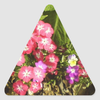 STBX Floral Decoration for Gift, Greetings, Craft Triangle Sticker