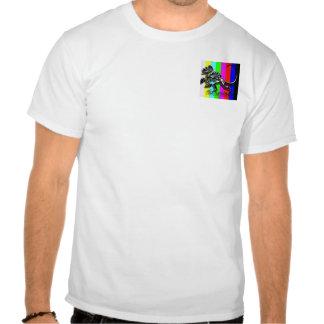 stead mire de barre tee shirt