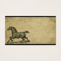 Steady Stead- Horses- Prim Biz Cards
