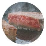 Steak 3 melamine plate