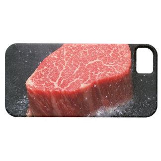 Steak iPhone 5 Cover