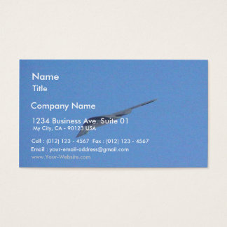 Stealth Bomber Business Card