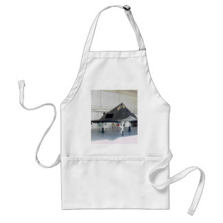 Stealth Fighter F117a Apron