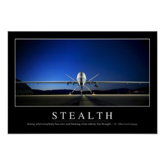 Stealth: Inspirational Quote Poster