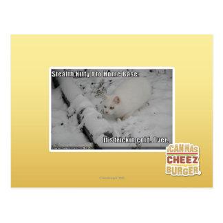 Stealth Kitty 1 Postcard