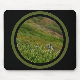 Stealth Squirrel - Multi Frame Mouse Pad