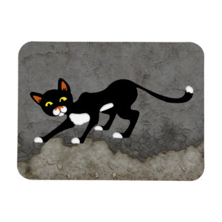 Stealthy Black & White Cat Rectangular Photo Magnet
