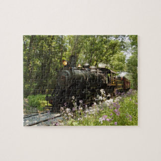 Steam Engine in the Valley Puzzle