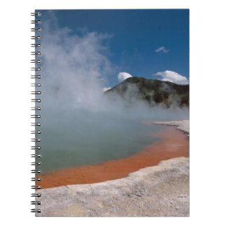 Steam rising from Champagne Pool at WAI-O-TAPU Note Book