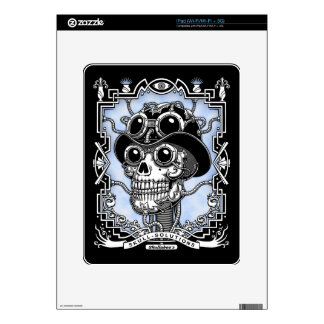 Steam Skullabee Skin For The iPad