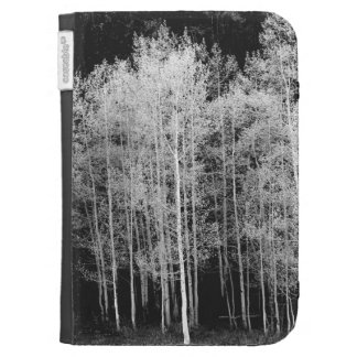 Steamboat, Routt County, Colorado Kindle Case