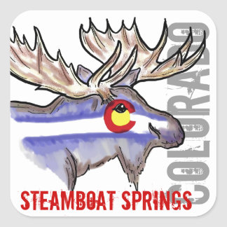 Steamboat Springs Colorado flag elk design sticker