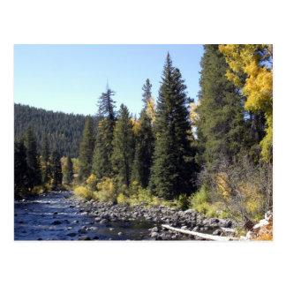 Steamboat Springs, Colorado Postcard