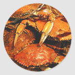 Steamed Maryland Hard Crabs Round Stickers