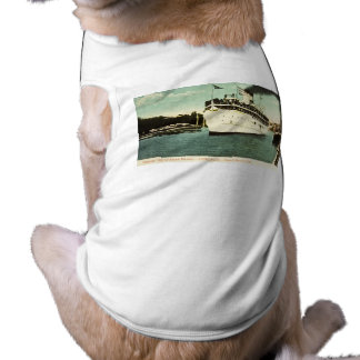 Steamer City of South Haven Great Lakes T-Shirt