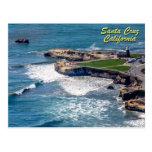 Steamer Lane-Santa Cruz, California Postcard
